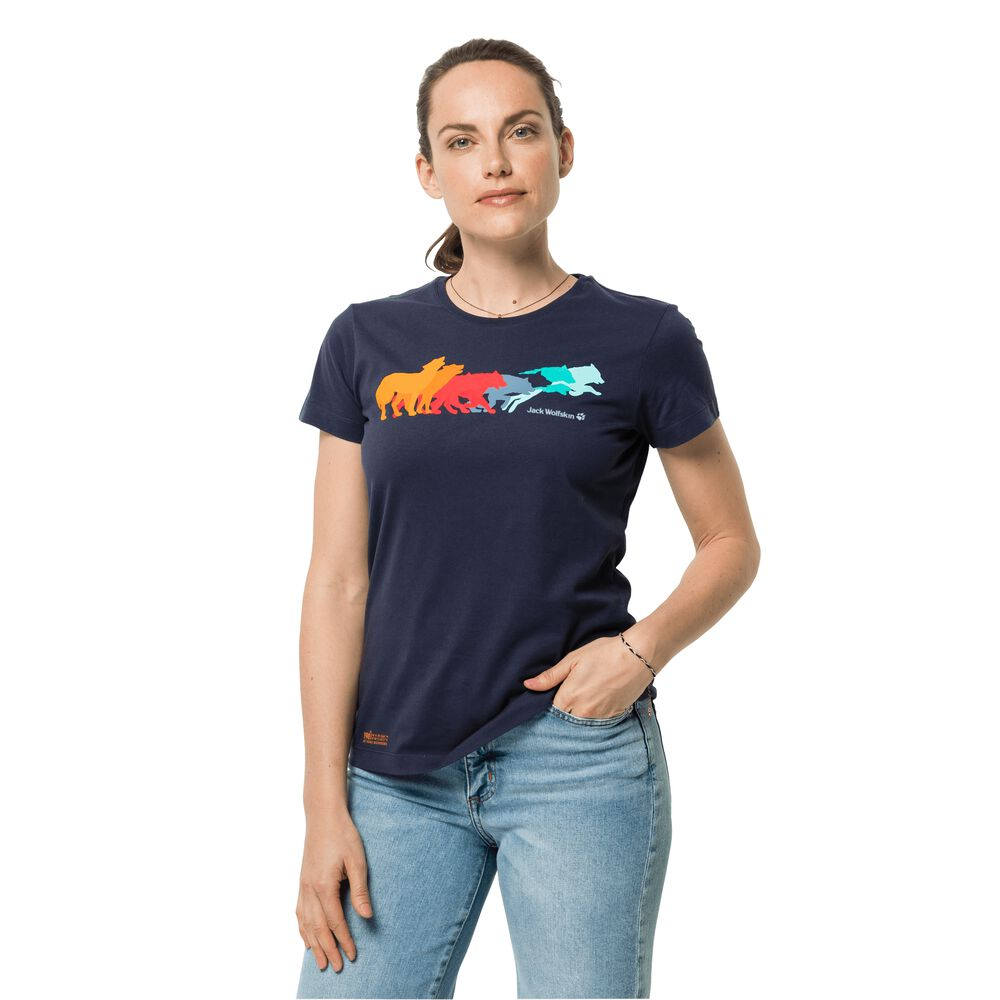 Image of Jack Wolfskin Bio-Baumwoll-T-Shirt Frauen Rainbow Wolf T-Shirt Women L grau graphite